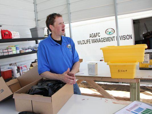 Hunt Begins for CWD-Infected Deer & Elk in Arkansas