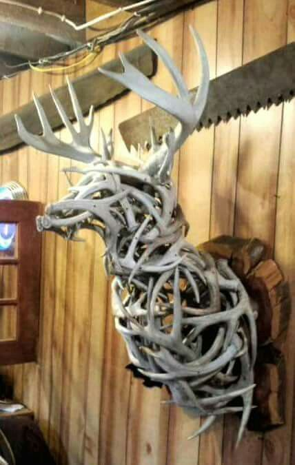 10 Unique Decorating Ideas For Your Shed Antlers The Venatic