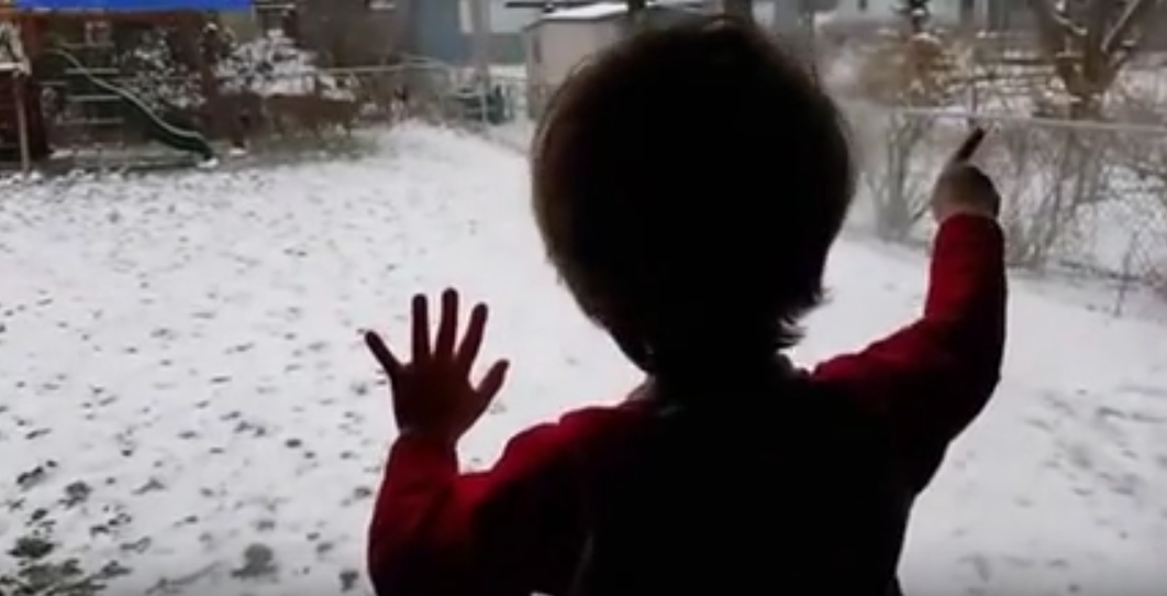 Ohio Boy Goes Nuts When a Herd of Deer Play in His Backyard