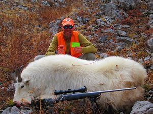 Wyoming's Second-Largest Mountain Goat Killed by Hunter