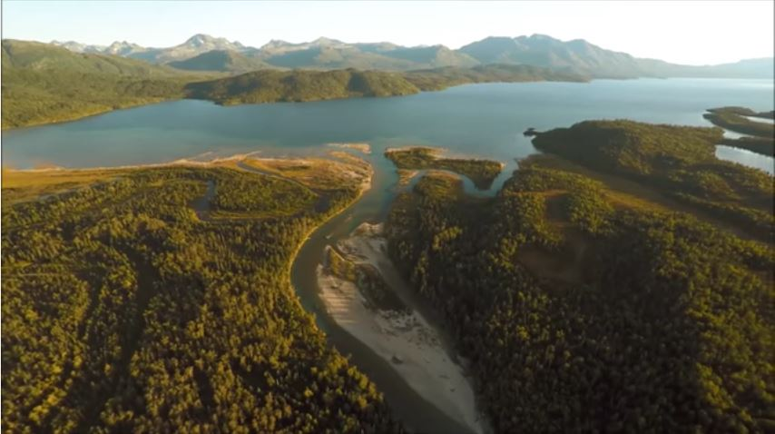 Watch: Stunning Drone Footage from Alaska's Famed Lake Iliamna Sockeye Salmon Migration