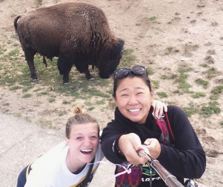 Report:  Yellowstone Bison Not Keen on Selfies