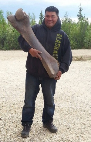 Duck Hunter Finds Woolly Mammoth Bone in Yukon River