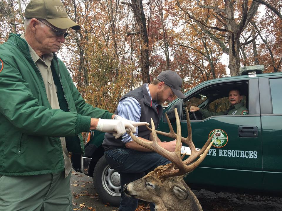 Tennessee Man Slapped with $10k Fine for Shooting Buck from His Driveway