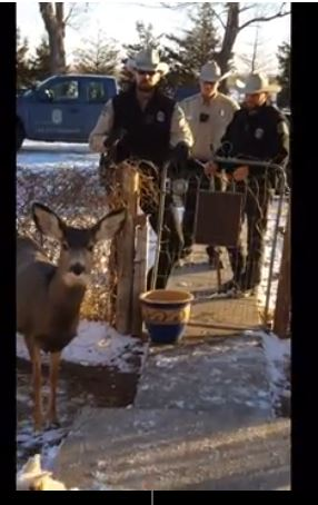 kansas-wildlife-officers-on-the-mcgaughey-property
