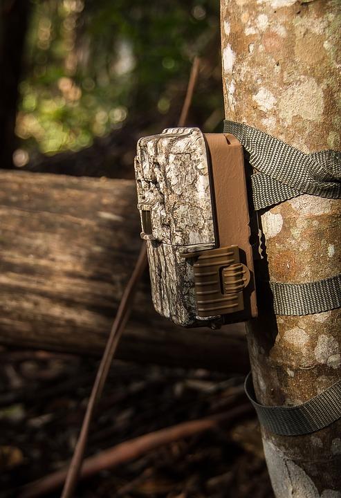 New Pennsylvania Bill Targets Trail Camera Thieves