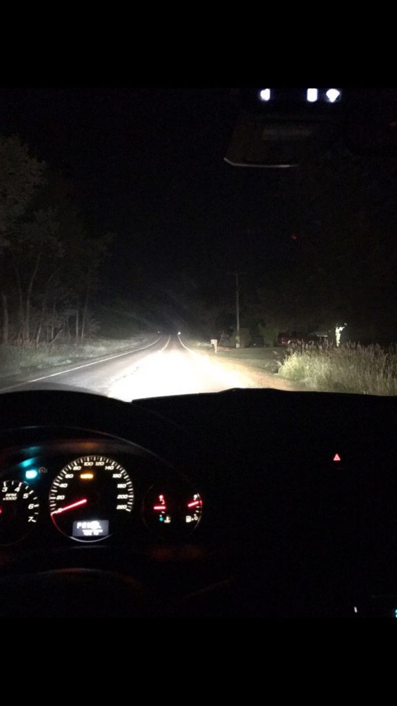 Cougar_sighting_Clinton_County