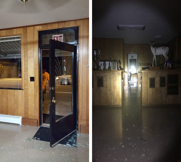 Deer Crashes Through the Window of Taxidermy Shop