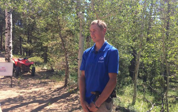Colorado Officials Hunting Black Bear that Attacked Sleeping Camper
