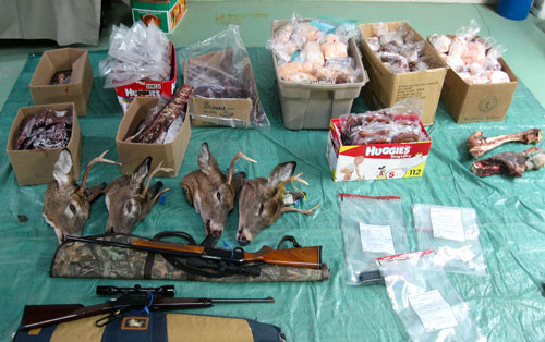 Nearly $300k in Fines Handed Out in One of Quebec's Biggest Poaching Busts