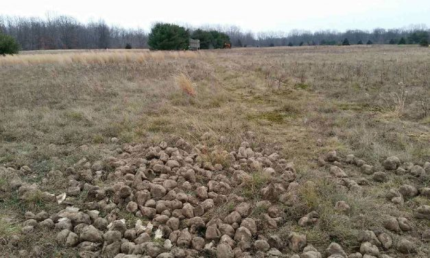 Michigan Man Sentenced After an Estimated 2.5 Tons of Bait Found on Deer Hunting Property