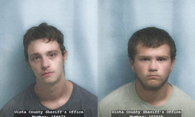 Wyoming Teens Charged with Poaching, Intoxicated Hunting