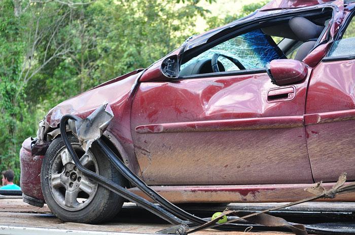 Turkey Poacher Crashes Car Fleeing Scene of Crime