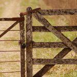 27 Deer Test Positive for CWD on Pennsylvania Farm