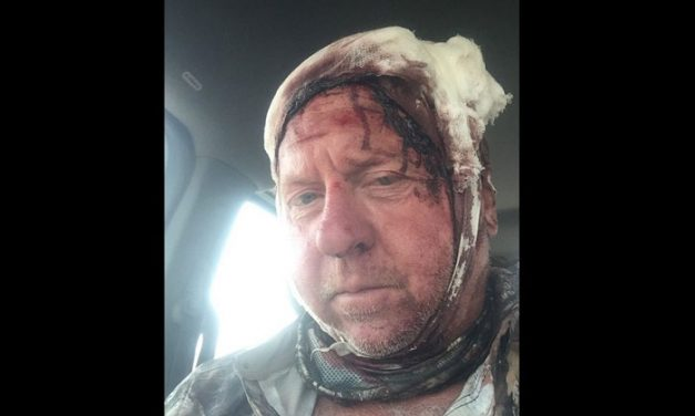 Elk Hunter Survives Grizzly Attack