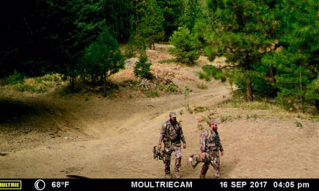 Oregon State Police Acquire Photographic Evidence of Poaching Suspects