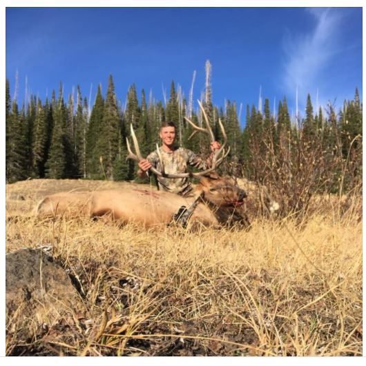 Soldier's Elk Head Stolen from Truck While Packing Out Meat